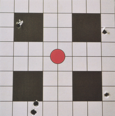 Zeiss ER Scope Target Accuracy