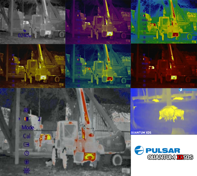 Pulsar Quantum XDS thermal night vision color pallets